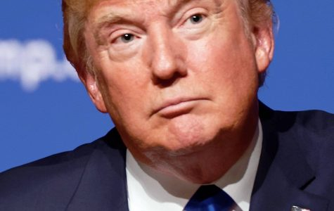 President of the Month: Donald Trump