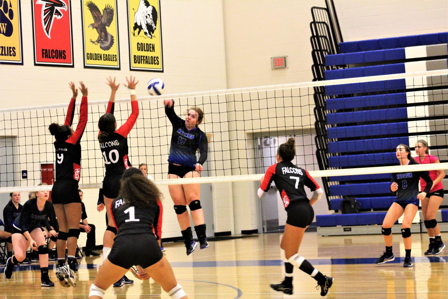 On November 19th the Crusaders host Heights for the Volleyball triangular. Senior Greta Lies goes in for the kill. Kapaun defeated Heights and undefeated in the triangular that included South.