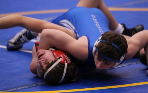 Wrestling finishes season with two Top 5 placements